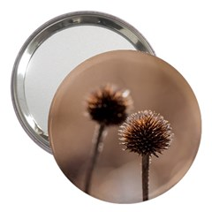 Withered Globe Thistle In Autumn Macro 3  Handbag Mirrors