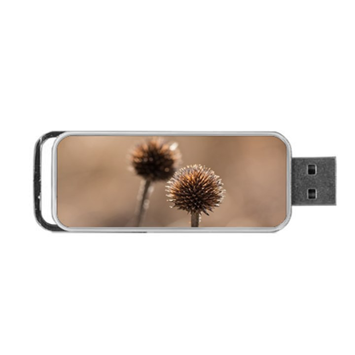 Withered Globe Thistle In Autumn Macro Portable USB Flash (One Side)