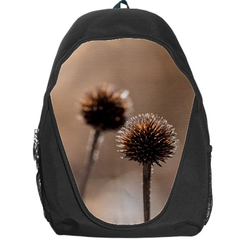 Withered Globe Thistle In Autumn Macro Backpack Bag
