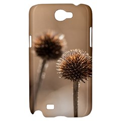 Withered Globe Thistle In Autumn Macro Samsung Galaxy Note 2 Hardshell Case