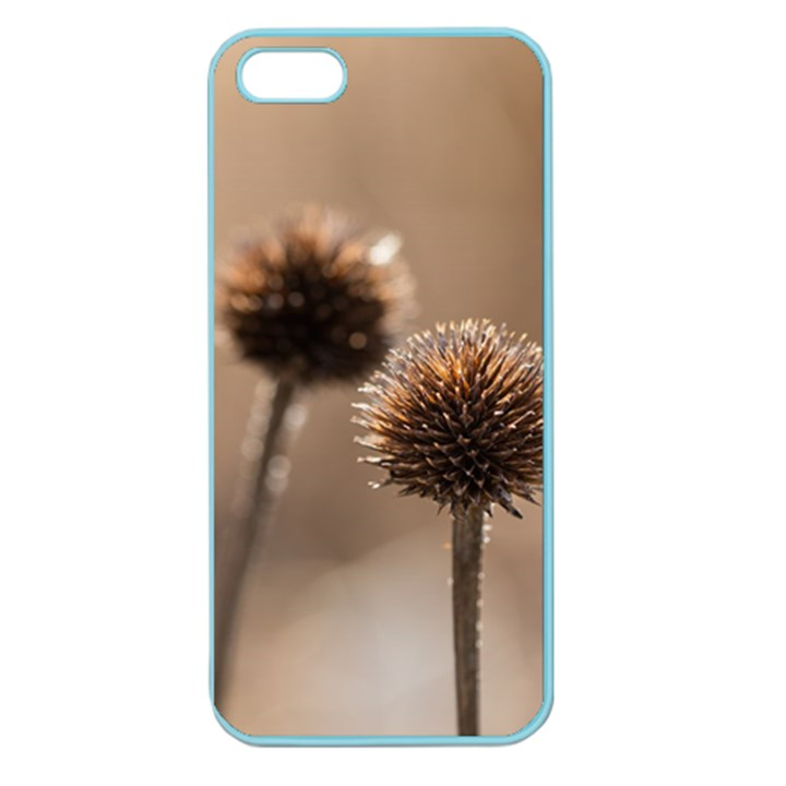 Withered Globe Thistle In Autumn Macro Apple Seamless iPhone 5 Case (Color)