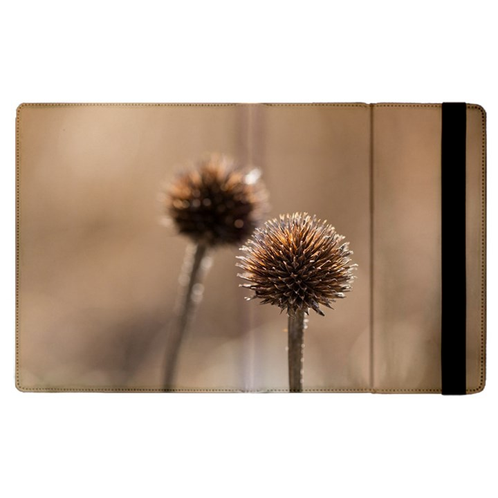 Withered Globe Thistle In Autumn Macro Apple iPad 3/4 Flip Case