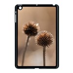 Withered Globe Thistle In Autumn Macro Apple iPad Mini Case (Black) Front