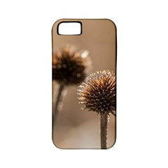 Withered Globe Thistle In Autumn Macro Apple iPhone 5 Classic Hardshell Case (PC+Silicone)