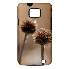 Withered Globe Thistle In Autumn Macro Samsung Galaxy S II i9100 Hardshell Case (PC+Silicone)