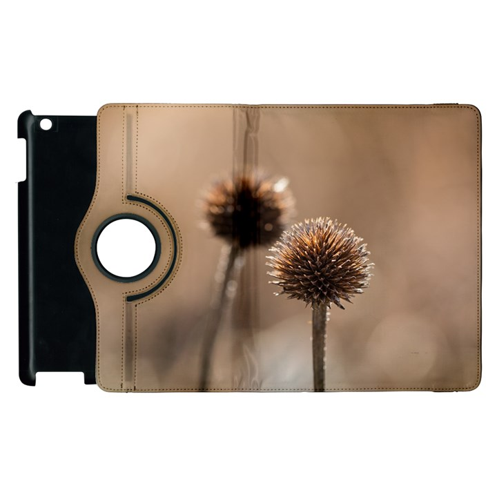 Withered Globe Thistle In Autumn Macro Apple iPad 3/4 Flip 360 Case