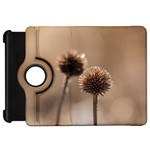 Withered Globe Thistle In Autumn Macro Kindle Fire HD Flip 360 Case Front