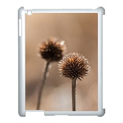 Withered Globe Thistle In Autumn Macro Apple Ipad 3/4 Case (white)