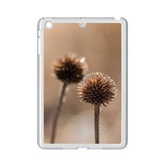 Withered Globe Thistle In Autumn Macro Ipad Mini 2 Enamel Coated Cases