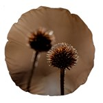 Withered Globe Thistle In Autumn Macro Large 18  Premium Round Cushions Back