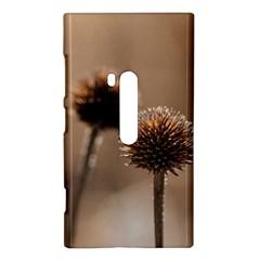 Withered Globe Thistle In Autumn Macro Nokia Lumia 920