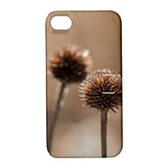 Withered Globe Thistle In Autumn Macro Apple Iphone 4/4s Hardshell Case With Stand