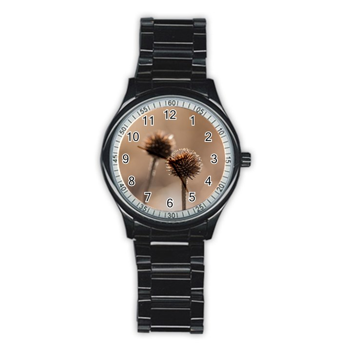 Withered Globe Thistle In Autumn Macro Stainless Steel Round Watch
