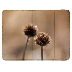 Withered Globe Thistle In Autumn Macro Samsung Galaxy Tab 7  P1000 Flip Case