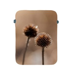 Withered Globe Thistle In Autumn Macro Apple iPad 2/3/4 Protective Soft Cases