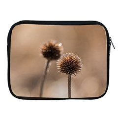 Withered Globe Thistle In Autumn Macro Apple iPad 2/3/4 Zipper Cases