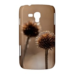 Withered Globe Thistle In Autumn Macro Samsung Galaxy Duos I8262 Hardshell Case