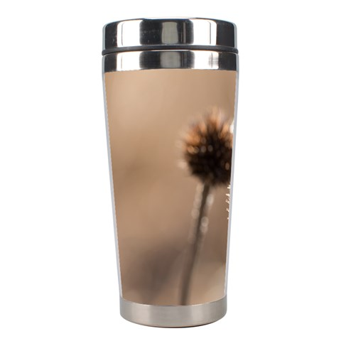 Withered Globe Thistle In Autumn Macro Stainless Steel Travel Tumblers