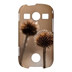Withered Globe Thistle In Autumn Macro Samsung Galaxy S7710 Xcover 2 Hardshell Case