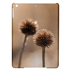 Withered Globe Thistle In Autumn Macro Ipad Air Hardshell Cases