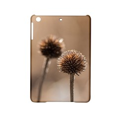 Withered Globe Thistle In Autumn Macro Ipad Mini 2 Hardshell Cases