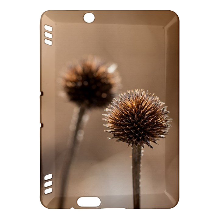 Withered Globe Thistle In Autumn Macro Kindle Fire HDX Hardshell Case