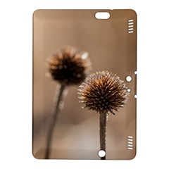 Withered Globe Thistle In Autumn Macro Kindle Fire Hdx 8 9  Hardshell Case