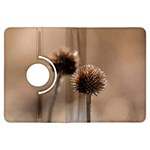 Withered Globe Thistle In Autumn Macro Kindle Fire HDX Flip 360 Case Front