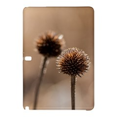 Withered Globe Thistle In Autumn Macro Samsung Galaxy Tab Pro 10.1 Hardshell Case