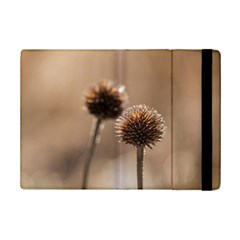 Withered Globe Thistle In Autumn Macro Ipad Mini 2 Flip Cases