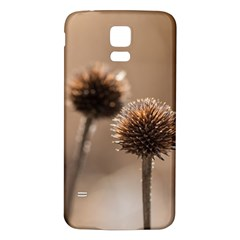 Withered Globe Thistle In Autumn Macro Samsung Galaxy S5 Back Case (White)
