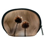 Withered Globe Thistle In Autumn Macro Accessory Pouches (Medium)  Back