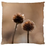 Withered Globe Thistle In Autumn Macro Large Flano Cushion Case (One Side) Front