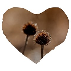 Withered Globe Thistle In Autumn Macro Large 19  Premium Flano Heart Shape Cushions