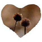 Withered Globe Thistle In Autumn Macro Large 19  Premium Flano Heart Shape Cushions Back