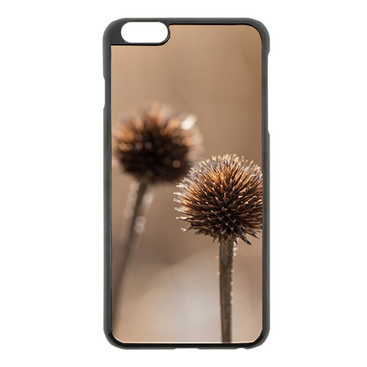 Withered Globe Thistle In Autumn Macro Apple iPhone 6 Plus/6S Plus Black Enamel Case