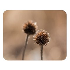 Withered Globe Thistle In Autumn Macro Double Sided Flano Blanket (Large)