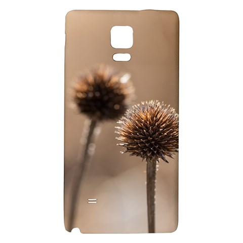 Withered Globe Thistle In Autumn Macro Galaxy Note 4 Back Case