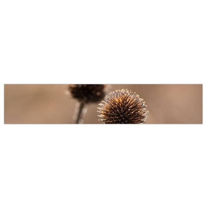Withered Globe Thistle In Autumn Macro Flano Scarf (Small)