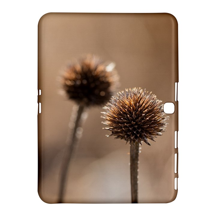 Withered Globe Thistle In Autumn Macro Samsung Galaxy Tab 4 (10.1 ) Hardshell Case