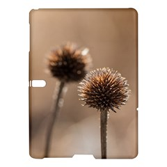 Withered Globe Thistle In Autumn Macro Samsung Galaxy Tab S (10 5 ) Hardshell Case