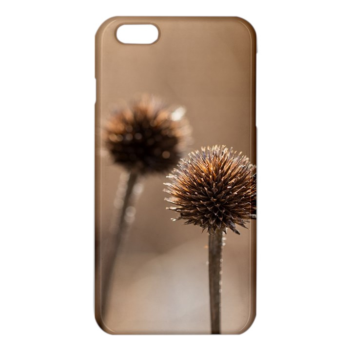 Withered Globe Thistle In Autumn Macro iPhone 6 Plus/6S Plus TPU Case