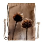Withered Globe Thistle In Autumn Macro Drawstring Bag (Large) Back