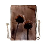 Withered Globe Thistle In Autumn Macro Drawstring Bag (Small) Front