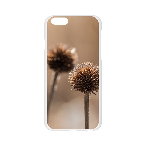 Withered Globe Thistle In Autumn Macro Apple Seamless iPhone 6/6S Case (Transparent)