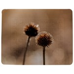 Withered Globe Thistle In Autumn Macro Jigsaw Puzzle Photo Stand (Rectangular) Front