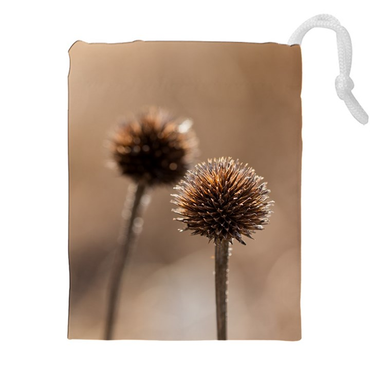 Withered Globe Thistle In Autumn Macro Drawstring Pouches (XXL)
