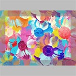 Anemones Deluxe Canvas 18  x 12   18  x 12  x 1.5  Stretched Canvas