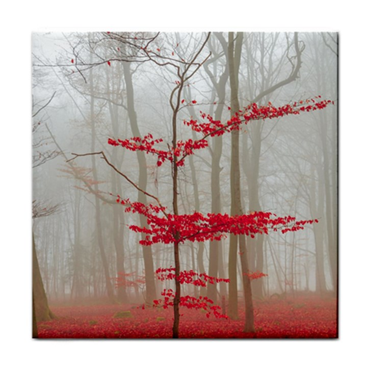 Magic forest in red and white Tile Coasters
