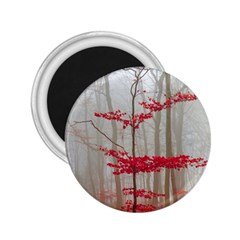 Magic Forest In Red And White 2 25  Magnets